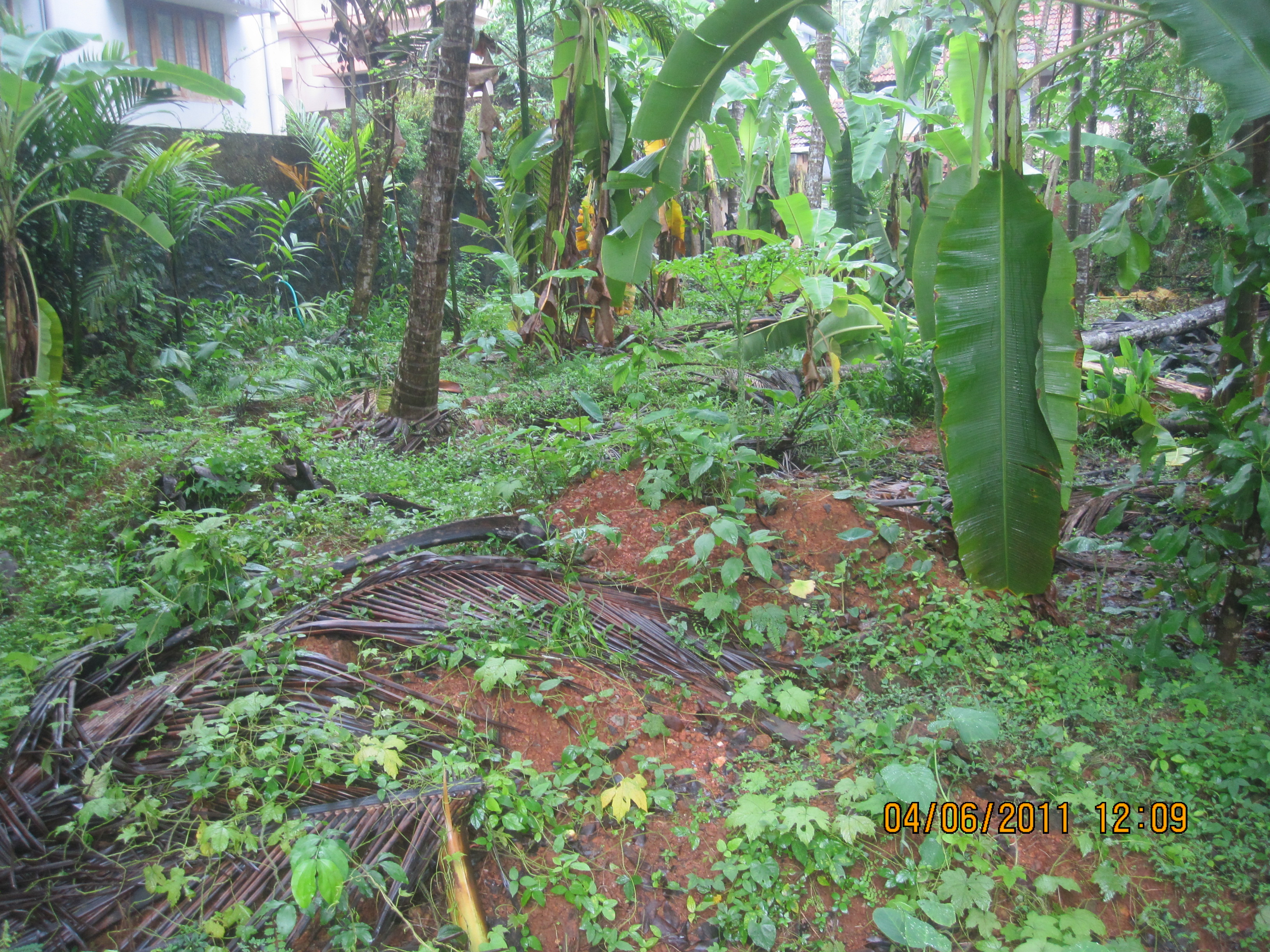Residential Plot in Calicut