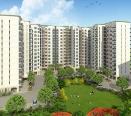 DLF HIGH RISE APARTMENT FOR SALE