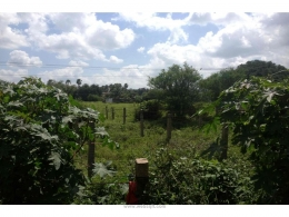 Websqft -  Residential Land - Property for Sale - in 24200Sq-yrd/Kompally at Rs 360000030