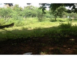 Websqft -  Residential Land - Property for Sale - in 445Sq-yrd/Kompally at Rs 667500