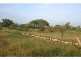 Websqft -  Residential Land - Property for Sale - in 1000Sq-yrd/Muthangi at Rs 6000000