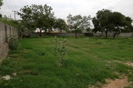 Websqft -  Industrial Land - Property for Sale - in 3630Sq-yrd/Uppal at Rs 108900000