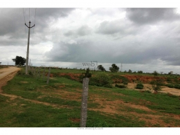Websqft -  Commercial Land - Property for Sale - in 5Acre/Isnapur at Rs 30000000