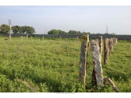 Websqft -  Residential Land - Property for Sale - in 480Sq-yrd/kottur at Rs 2400000