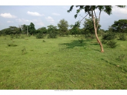 Websqft -  Residential Land - Property for Sale - in 1066Sq-yrd/Moinabad at Rs 1599000