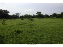 Websqft -  Residential Land - Property for Sale - in 1000Sq-yrd/Moinabad at Rs 1500000