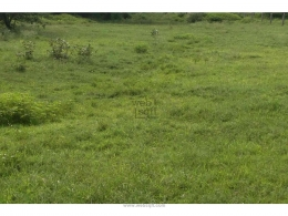 Websqft -  Residential Land - Property for Sale - in 9000Sq-ft/Moinabad at Rs 1503000