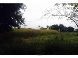Websqft -  Residential Land - Property for Sale - in 600Sq-yrd/Shankarpally at Rs 13800000