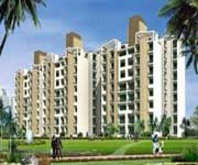 Flat in Chandigarh