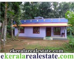 House in Pathanamthitta