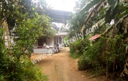 3acre land with (1200sqft) 3bhk house for sale in koleri.wayanad
