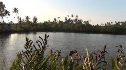1ACRE 75CENT TOURISAM LAND FOR SALE IN KUBALANGI,KOCHI,ALUVA,ANGMALY ERNAKULAM DISTRICT KERALA.