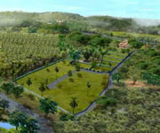 Land in Goa