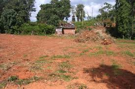 Land in Mangalore