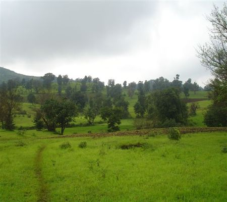 Land in Nashik