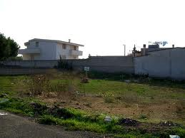 Land in Noida