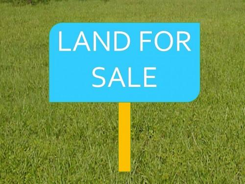 387 Cents Commercial  Land In Palakkad  Town  For Sale