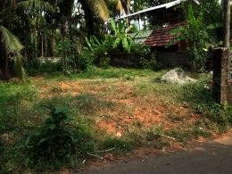 10cent Residential plot for sale Elinjipra Thrissur District.