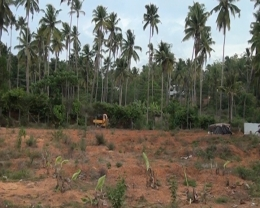 Land in Thrissur