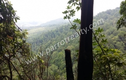 20 acre Land for sale in Near Vythiri.