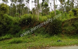 20cent house plot for sale in near Ambalavayal.
