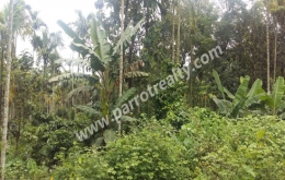 33cent house plot for sale in near Poothadi.wayanad