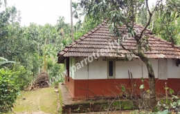 Land with small house for sale in near Irulam.
