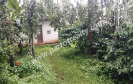 46cent land with small house for sale in manalvayal.