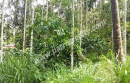 2acre land with house for sale in Manalvayal
