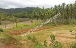 2acre land for sale in (Area pally) pulpally.wayanad
