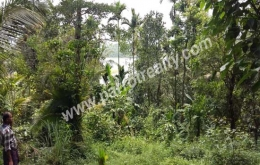 30cent water frontage land for sale near Padinjarathara. wayanad
