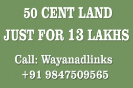 Land in Wayanad