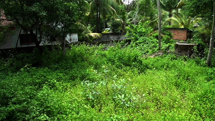 Land in ernakulam