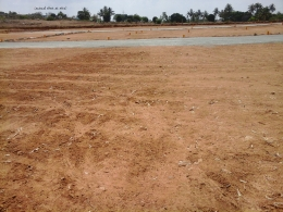 Plots at affordable prices near CARMEL Inernational school
