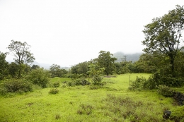 Land for sale in mulshi