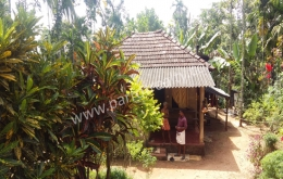 57cent land with small house for sale in   Athirattukunnu(kenichira), Wayanad.