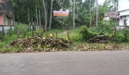 Residential Plot in Alappuzha