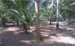 Residential Plot for sale in Alappuzha
