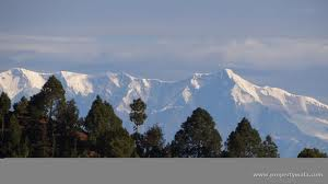 Residential Plot for sale in Nainital,Almora
