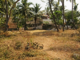 Residential Plot in Palakkad