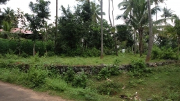 Residential Plot in Thrissur