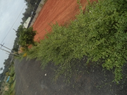 30*40 villa land available in hebbal