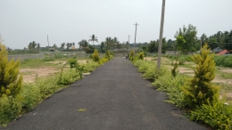 residential villa plots in thanisanndra main road