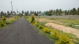 A katha and dc converted land for sale in hedge nagar