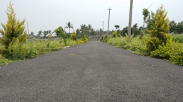 D C converted residential plots for sale thanisandra main road