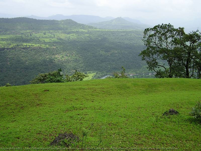 Residential Plot in raigad