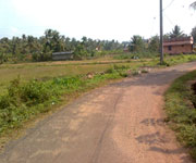 Residential Plot for sale  in kalamassery near cusat, Cochin
