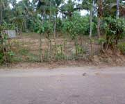 Residential Plot  for sale in Aluva, Cochin